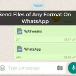 How to Send Files of Any Format On WhatsApp